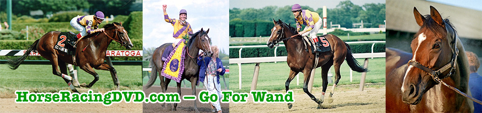 Go For Wand