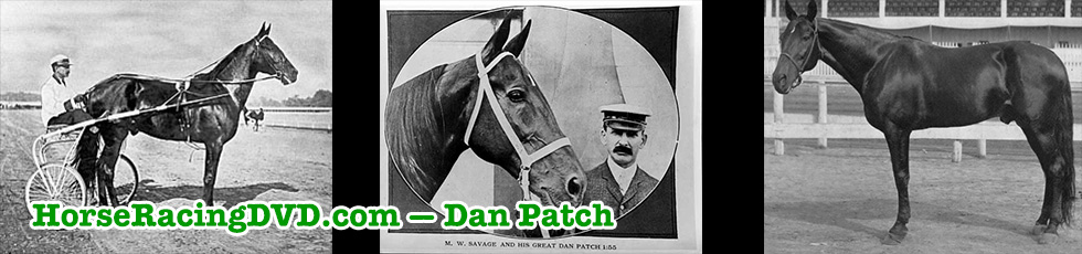 Dan Patch