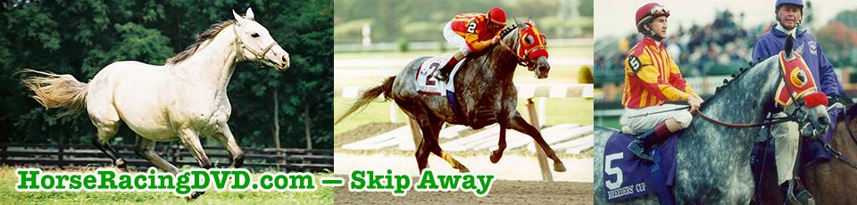 Skip Away