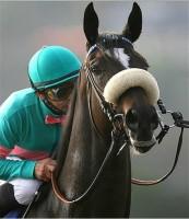 ZENYATTA's 2009 CLEMENTE L. HIRSCH STAKES (12th Straight Win): TVG's