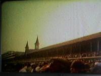 THOROUGHBRED GREATS - Home Movie Films of RETIRED LEGENDARY HORSES (SECRETARIAT, SEATTLE SLEW, etc.) - RARE!!