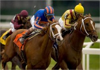2007 TRIPLE CROWN RACES (Entire Televised Broadcasts)