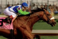 2006 TRIPLE CROWN RACES (Entire Televised Broadcasts)