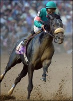 2005 TRIPLE CROWN RACES (Entire Televised Broadcasts)