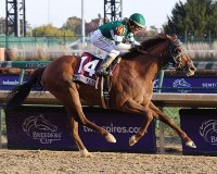 2018 BREEDERS' CUP (Entire Televised Broadcast from CHURCHILL DOWNS)