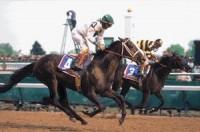 1996 TRIPLE CROWN RACES (Entire Televised Broadcasts) w/BONUS RACES
