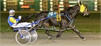 2001 CANADA'S BEST TROTTERS and PACERS YEAR-END REVIEW