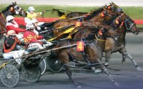 1996 TROTTERS ONLY YEAR-END REVIEW