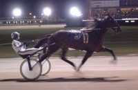 1995 TROTTERS and PACERS YEAR-END REVIEW