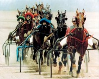 1993 TROTTERS and PACERS YEAR-END REVIEW