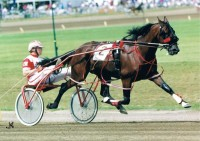 1989 TROTTERS and PACERS YEAR-END REVIEW