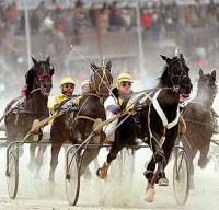 1987 TROTTERS and PACERS YEAR-END REVIEW