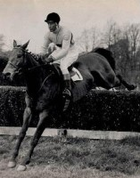 ARKLE: THE LEGEND