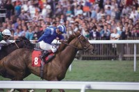 1989 FLAT RACING REVIEW (EUROPEAN) - DAILY MAIL Version
