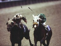 1985 BREEDERS' CUP (Entire Televised Broadcast from AQUEDUCT PARK)