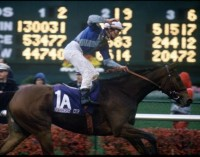 1988 BREEDERS' CUP (Entire Televised Broadcast from CHURCHILL DOWNS)