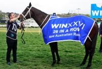 WINX SCORES 26th STRAIGHT VICTORY BREAKING BLACK CAVIAR's 25 CONSECUTIVE WIN RECORD (2018 Winx Warwick Stakes - Entire Televised Broadcast)